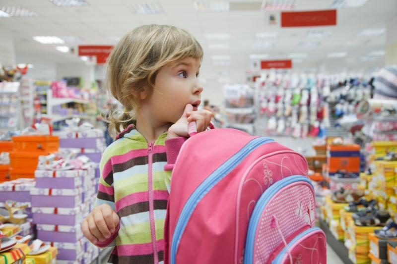 Valstybės kontrolė siūlo tobulinti mokinio krepšelio finansavimą