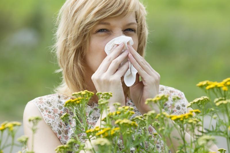 Alergija – XXI amžiaus  rykštė (alergologo komentaras)