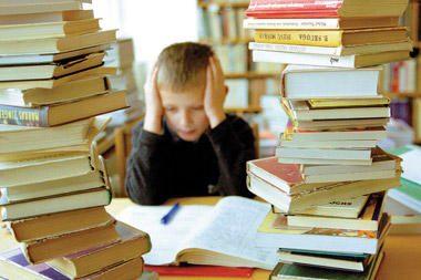 Lietuvos lenkai renka parašus prieš aktyvesnį lietuvių kalbos mokymąsi