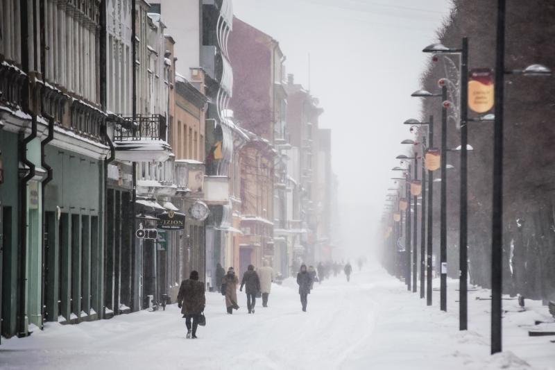 A. Kupčinskas: nelaukit Kalėdų senio, kuris atkastų kiemus