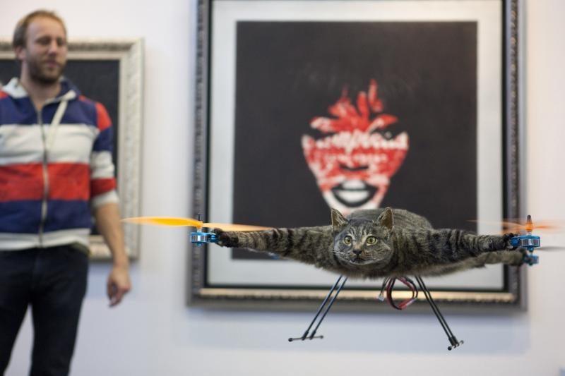 Žuvusį katiną sraigtasparniu pavertęs menininkas sukrėtė pasaulį