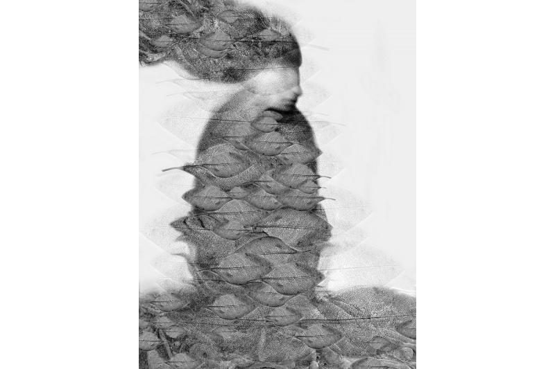 Fotografijos debiutantų parodoje - netikėti eksperimentai