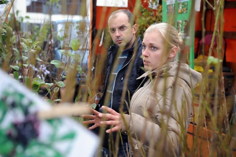 Vilniuje - tradicinė rudens gėrybių mugė