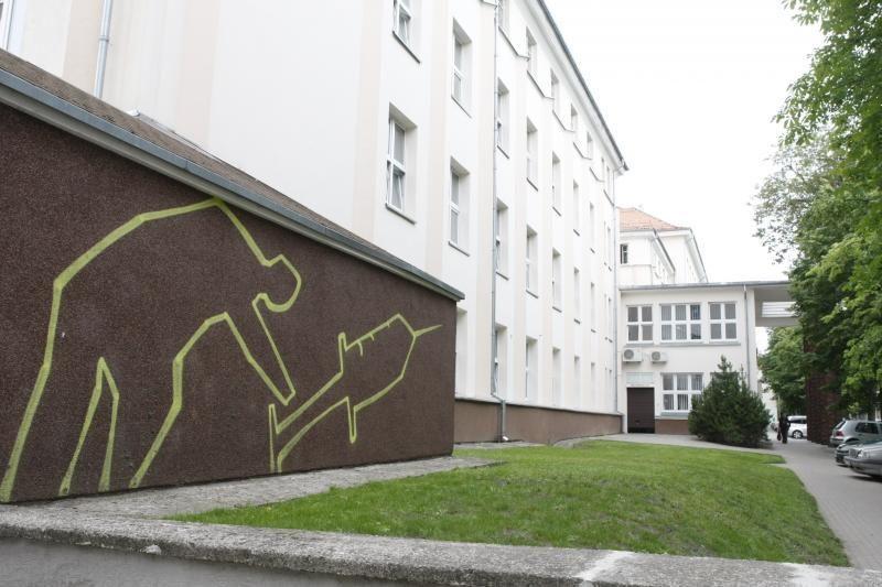 Ant vaikų ligoninės sienos – dviprasmiški piešiniai