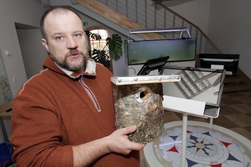 Ekologas: inkilai tampa spąstais sparnuočiams