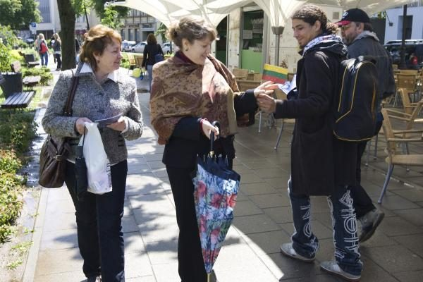 A.Čekuolis: reikia balsuoti, kad durniai nepatektų į EP