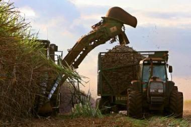 Biopriedų prievolę siūloma nukelti iki 2013 metų