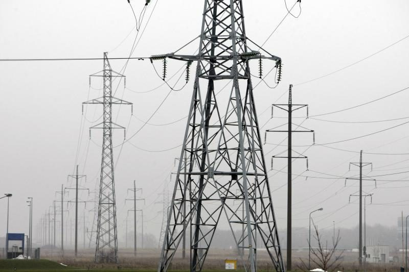 Kauno rajone elektra užmušė miškų urėdijos darbuotoją