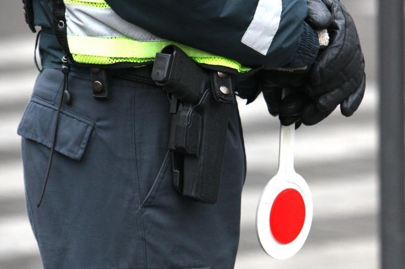 Kelių policija dirbo Dituvos soduose