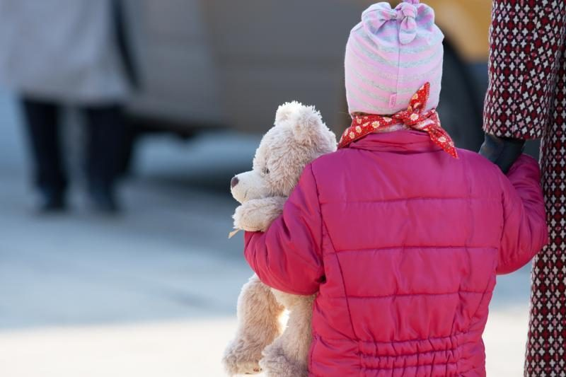Dėl D.Kedytės ir kitų Lietuvos vaikų teisių apgynimo