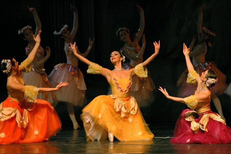 """Baleto spektakliams įrangos reikės daugiau nei """"Rammstein"""" koncertui"""