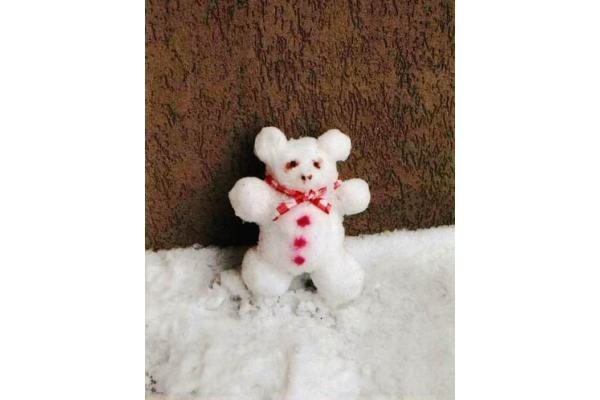 Sniego skulptūrų konkursas Vilniuje sulaukė susidomėjimo