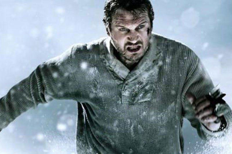 Aktoriui L.Neesonui filmavimas sniegynuose priminė žmonos žūtį