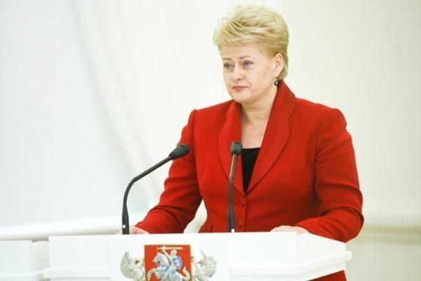 Valstybės gynimo taryba aptars NATO, VSD reformos klausimus