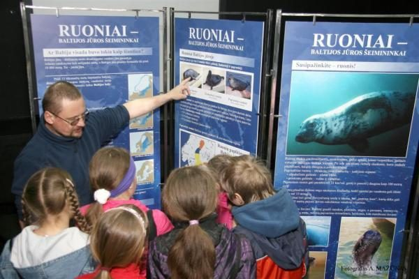 Jūrų muziejaus ruoniukams - Jungos ir Brigo vardai