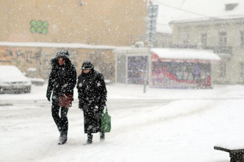 Šiltos žiemos taps įprastos, bet neskubėkime keisti metų laikų