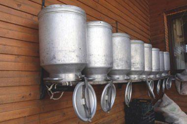 Lietuvoje pieno produktai toliau brangs