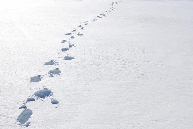 Ant Kauno marių ledo pasiklydusį vyrą išgelbėjo policija