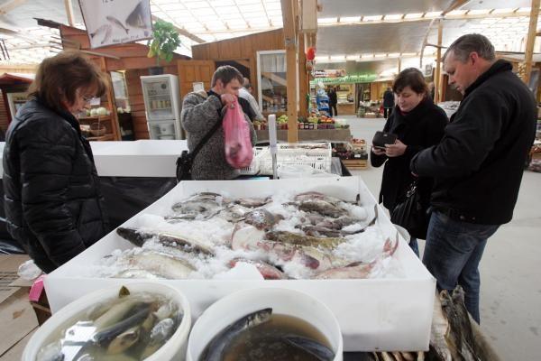 Turguje – dešimtys lietuviškos ir egzotiškos žuvies rūšių
