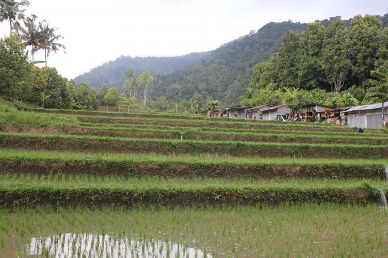 Pasakiškasis Balis: laimingo gyvenimo filosofija