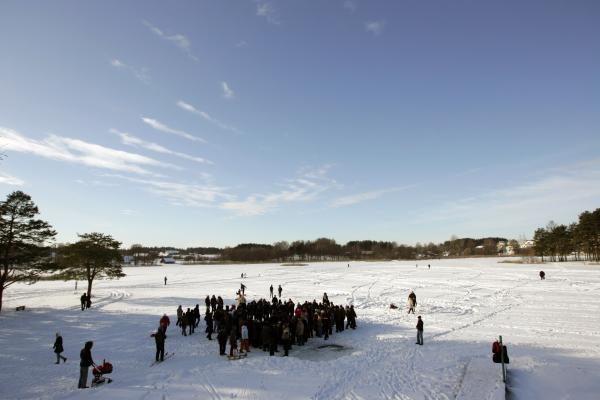 Šalčių nepabūgę ruoniai turškėsi Salotės ežere
