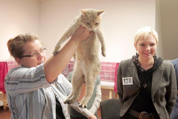 Kačių paroda pakerėjo sostinės gyventojus