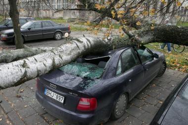 Audra Klaipėdoje: apgadinti 7 automobiliai
