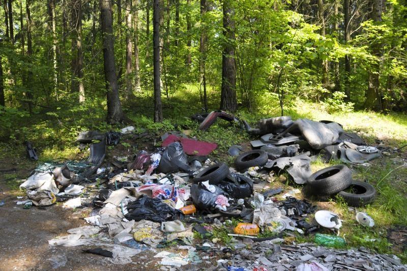 Didžiausias Kauno miškų siaubas – šiukšlintojai