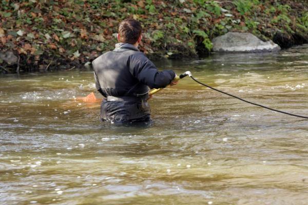 Į lašišų žvejybą mokslininkai eina su chirurgo instrumentais