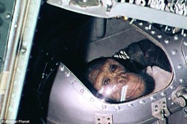 Hamas – pirmoji beždžionė kosmose