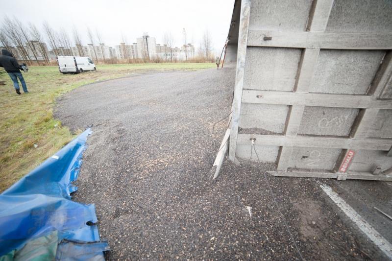 Vilkikas Kauno pakraštyje išpylė 25 tonas saulėgrąžų