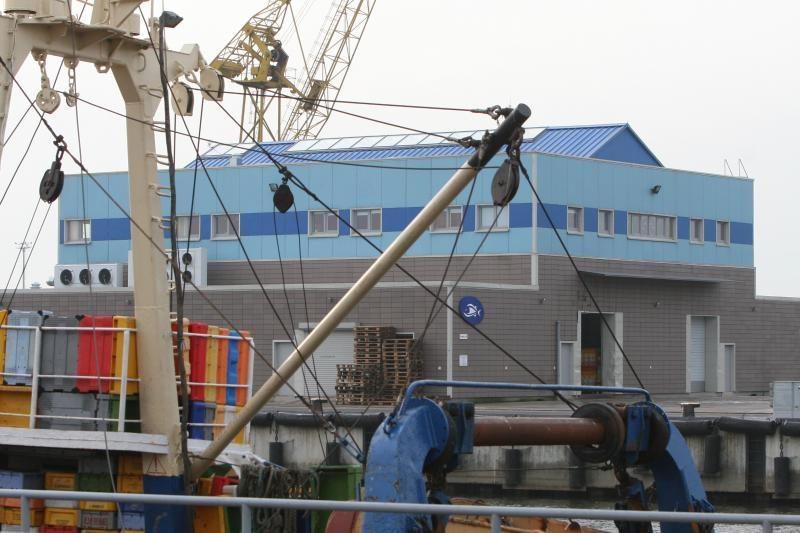Klaipėdos savivaldybės noras perimti Žuvų aukcioną neišblėso