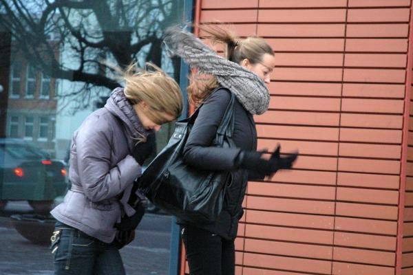 Saugokitės: Lietuvoje siautės stiprus vėjas
