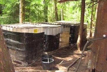 Bedarbiai statybininkai Šilutės miškuose virė naminukę