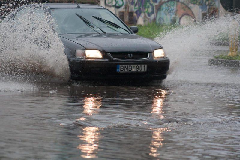 Vilniuje – liūtis prieš šventę