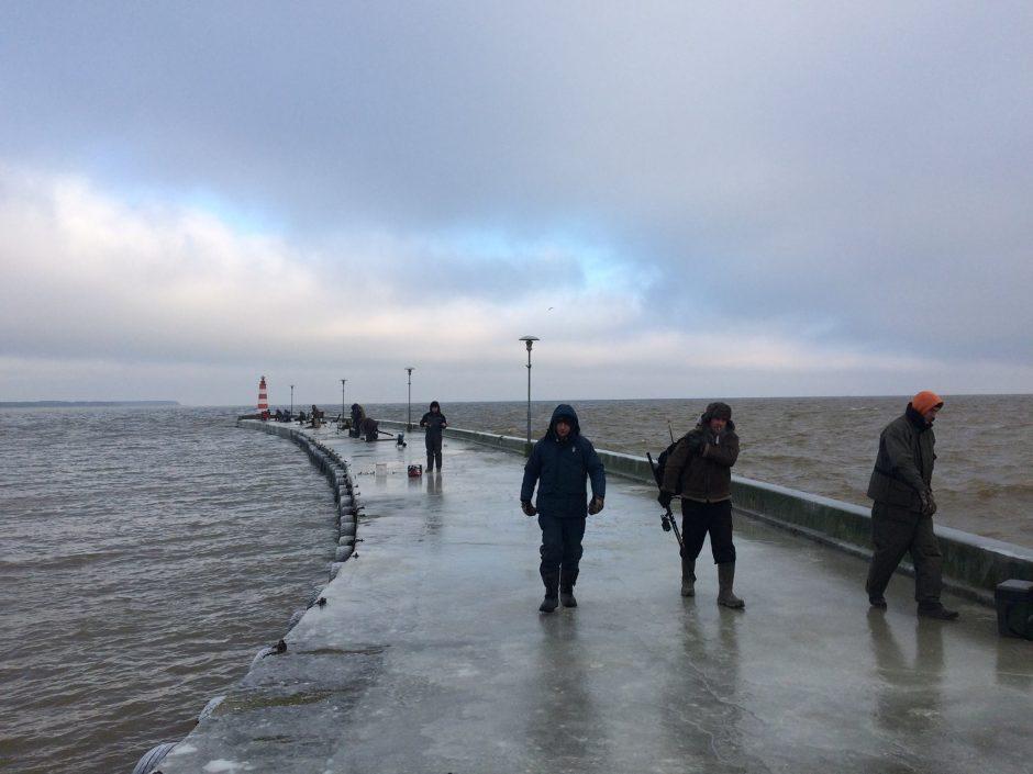 Išskirtinės ledo skulptūros Nidoje – geros naujienos Stintapūkio organizatoriams