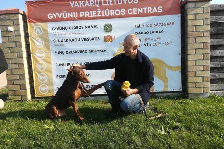 Kūdikį sudraskęs šuo Ramzis rado naujus namus