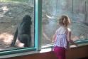 Pirmasis pasimatymas zoologijos sode baigėsi oro bučiniu