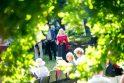 Kulautuva trankiai atšventė 650-ąjį gimtadienį