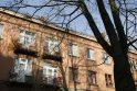 Sprendimas: septynių žmonių komisija sutarė, kad Naikupės gatvėje prie 14-ojo namo esantis medis – dar patenkinamos būklės.