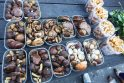Prekeiviai skundžiasi dėl menko baravykų derliaus