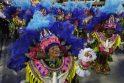 Rio de Žaneiro karnavalas pasiekė apogėjų