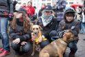 Gyvūnų mylėtojai reikalauja griežtesnių bausmių gyvūnų skriaudikams