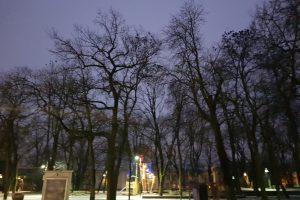 Rytinės varnų giesmės – Muzikinio teatro sode