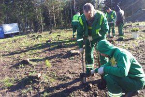 Skubota urėdijų reforma nepatenkinti miškininkai surengė piketą