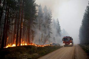 Švedija prašo ES šalių padėti gesinti miškų gaisrus