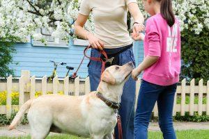 Terapiniai šunys padės vaikams įveikti baimes