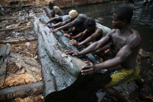 Miško dvasias garbinanti gentis kovoja už išlikimą