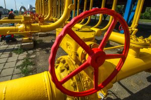 Permokos už dujas grąžinimo tvarką siūloma parengti per mėnesį