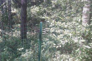 Neteisėta tvora brangiai kainuoja